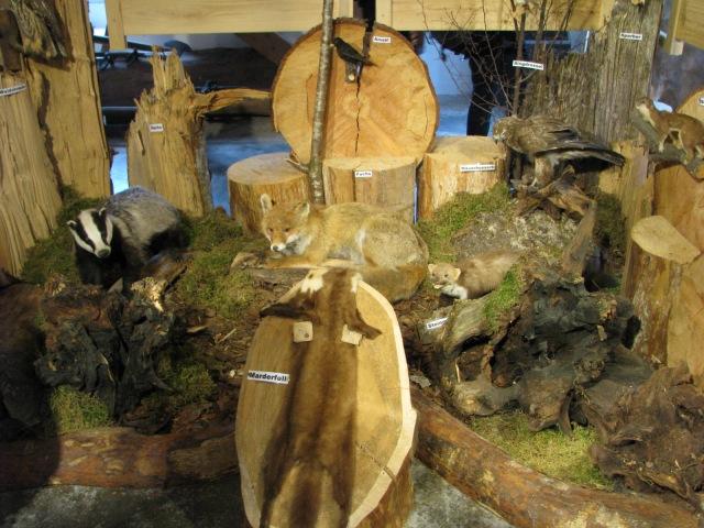 Woodwork display