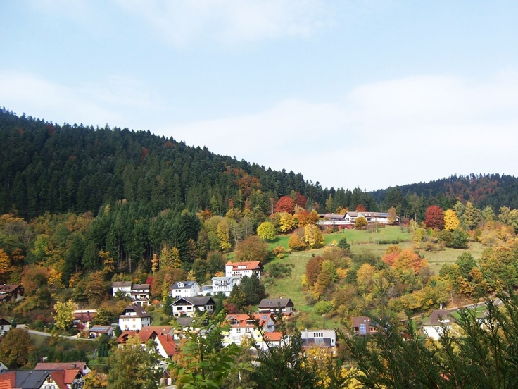 008 Fairytale Vista (Black Forest, Germany)