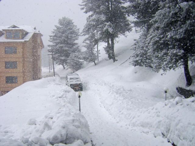 013 Snow, Snow, Go Away! (Gulmarg, Jammu & Kashmir, India)