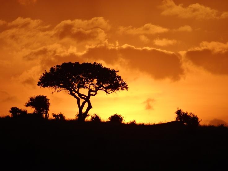 030 An African Sunset (Masai Mara, Kenya).JPG