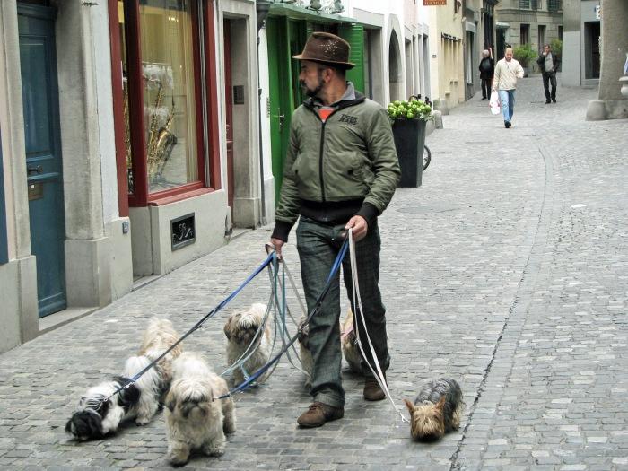 033 A Man's Best Friend (Zurich, Switzerland)
