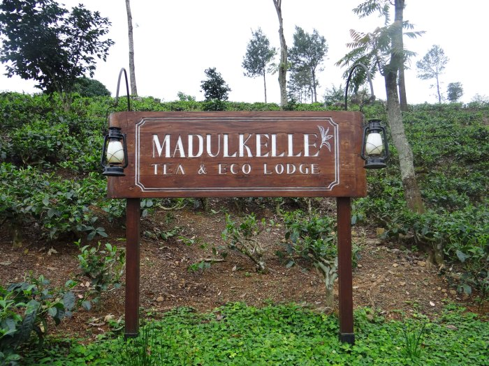2013-08-08 Madulkelle-51